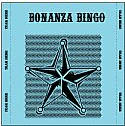 Image of a bonanza bingo card